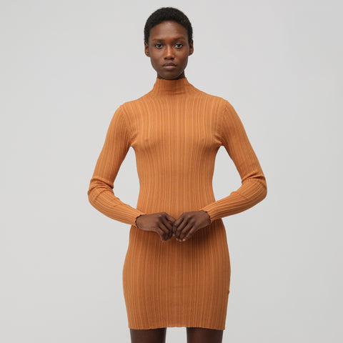 Acne Studios Women's Bodycon Long Sleeve Knit Dress in Toffee Brown - Notre