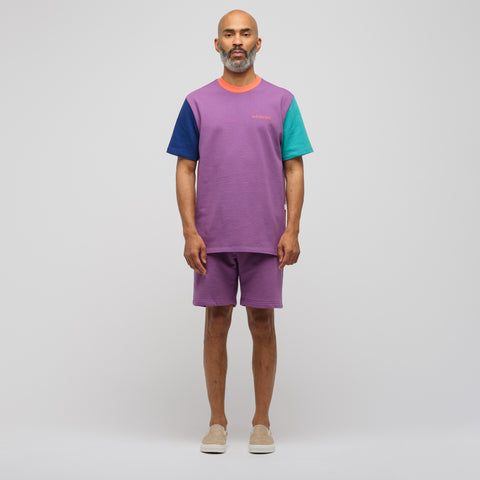 Aimé Leon Dore Color Blocked Logo T-Shirt in Purple - Notre