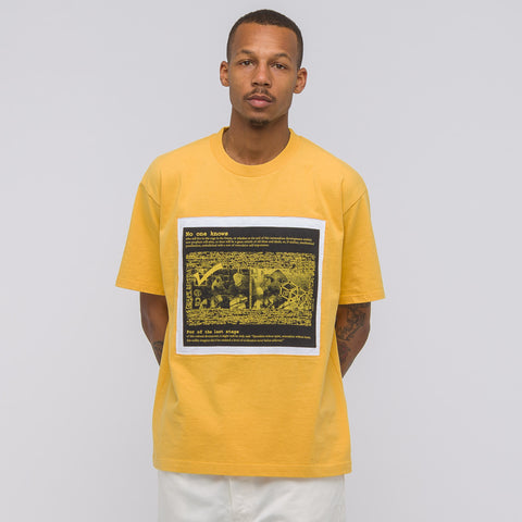 Cav Empt No One Knows Panel T-Shirt in Orange - Notre