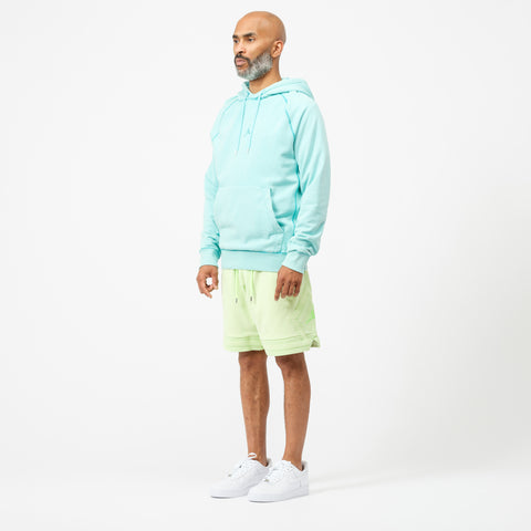 Wings Washed Fleece Pullover Sweatshirt in Light Aqua