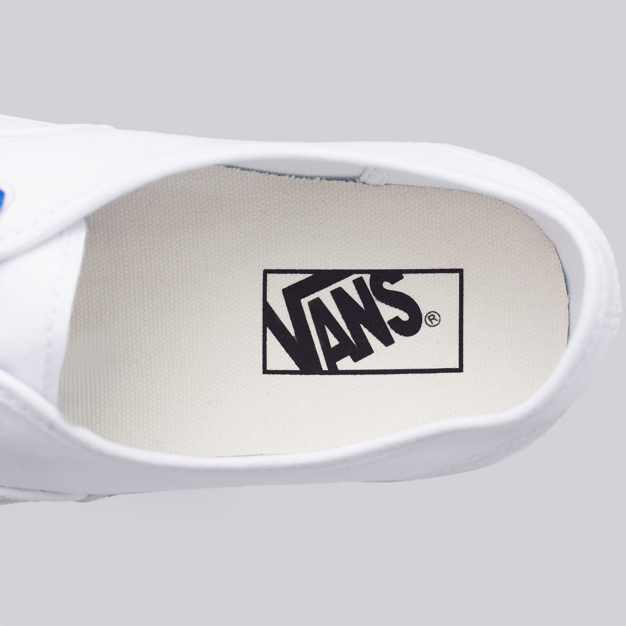 Authentic Sketch Sidewall in True White