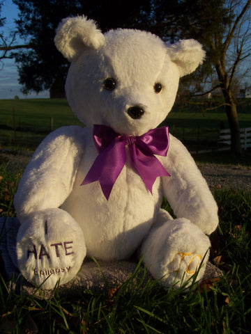 Charity Bear for epilepsy