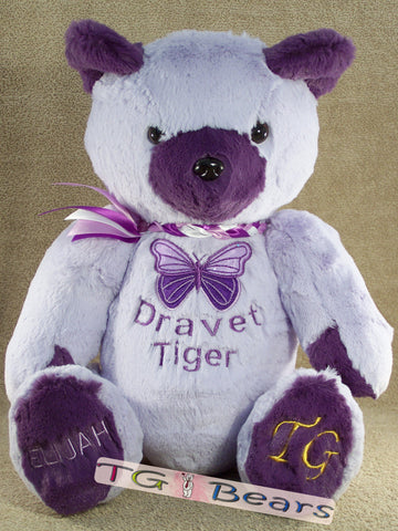 DS Hope Bear supports the Dravet Syndrome Foundation