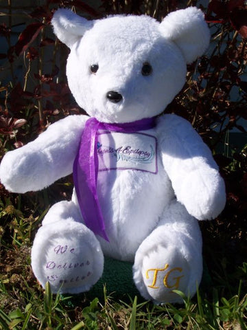 Jamie Bear, mascot for Angels4Epilepsy