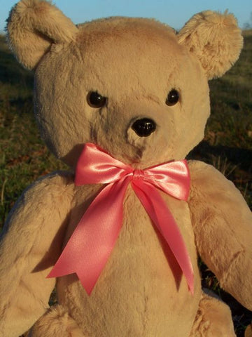 Jenny Bear is a light furred classic bear