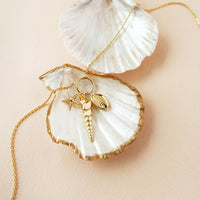 Como Shell Gold Necklace