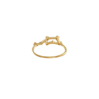 Aquarius Zodiac Gold Ring