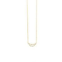 Capricorn Zodiac Gold Necklace - Wanderlust + Co