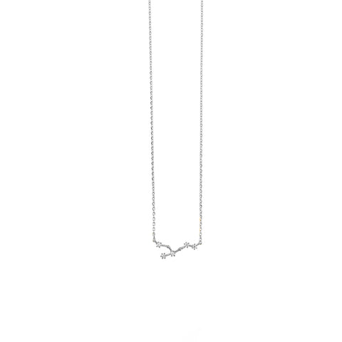 Leo Zodiac Silver Necklace