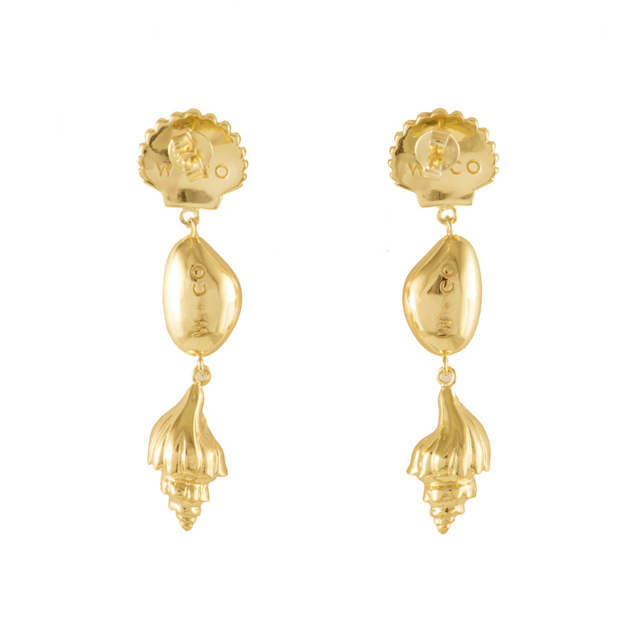 Como Shell Gold Earrings