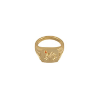 Solis Gold Signet Ring - Wanderlust + Co