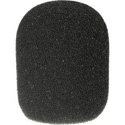 Microphone Accessory - Rode			 WS2 Windscreen for NT1-A, NT2-A, NT1000, NT2000, NTK, K2 & Broadcaster Microphones - Vizcom Technologies