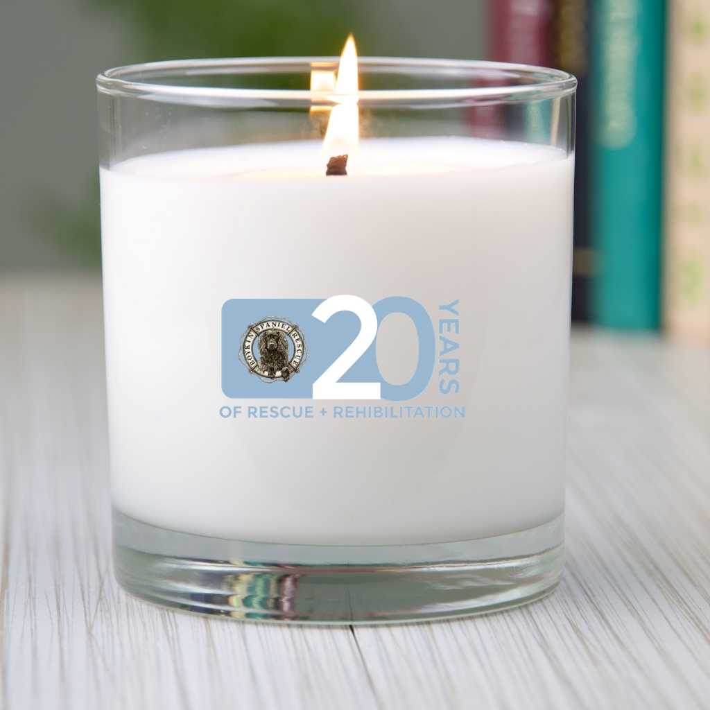 BSR 20th Year Candle