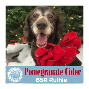 Ruthie's Pomegranate Cider