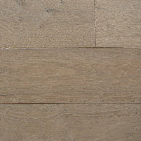 English Forest Collection - European Oak Frost