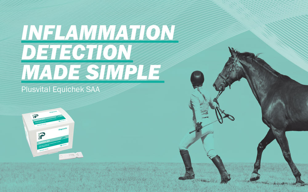 Plusvital Equichek SAA - Inflammation detection made simple