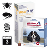 Dog tick, flea & worm package 1 (3 month auto delivery)