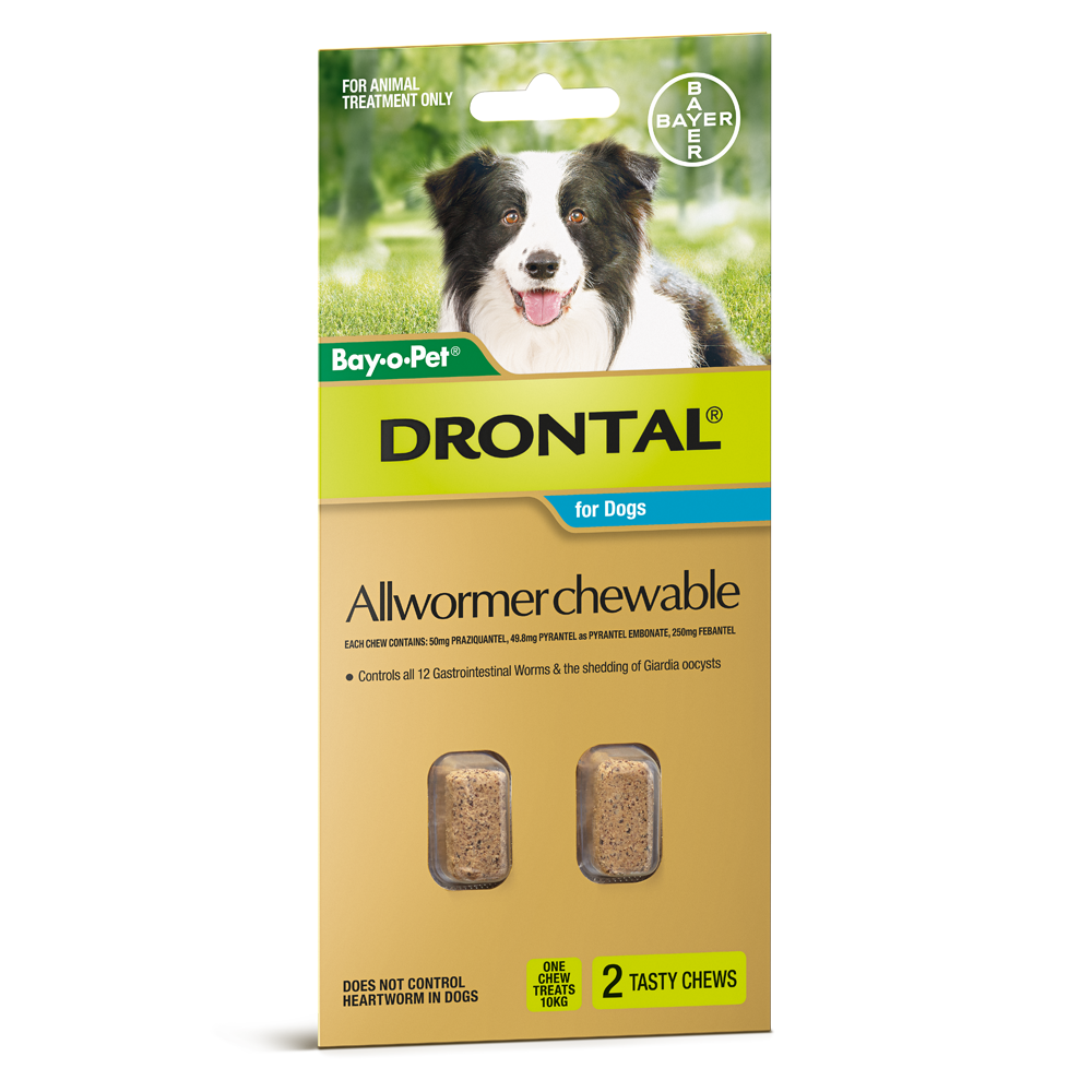 Droncit Tapewormer for Dogs and Cats (100 Tablets) – Country