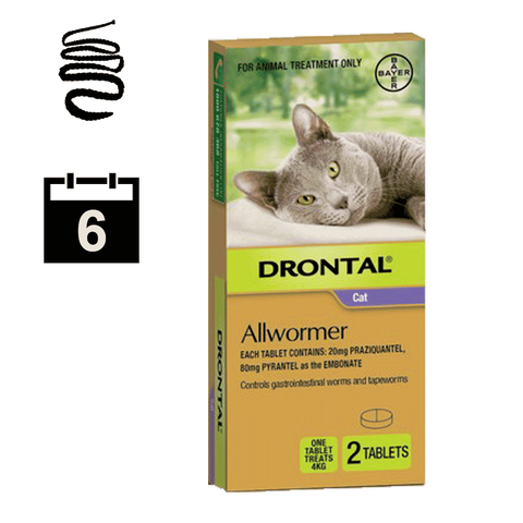 Drontal Allwormer for Cats up to 4kg - 2 pack (6 month auto delivery)