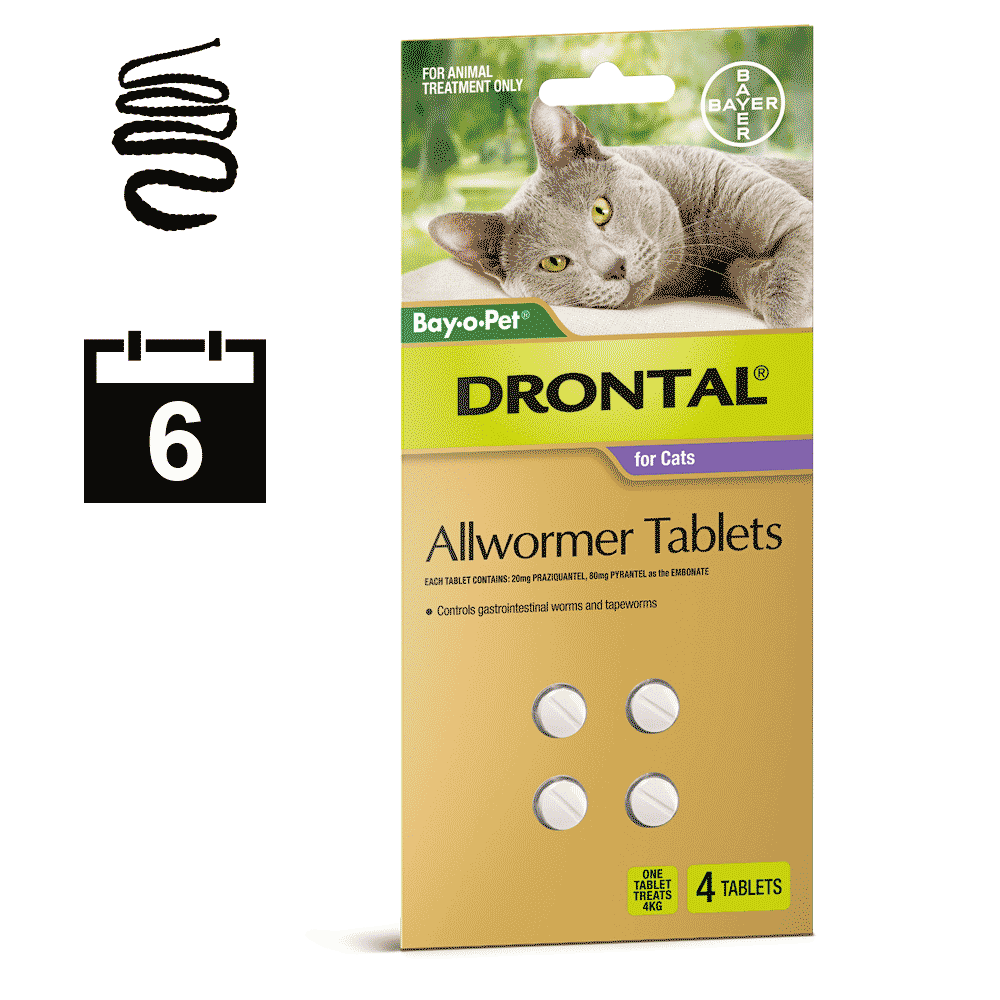 Drontal Allwormer for Cats 4-8kg - 4 pack (6 month auto delivery)
