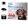 NexGard Chewables for Dogs  - Single pack (1 Month auto delivery)