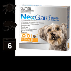 NexGard Chewables for Dogs - 6 pack (6 month auto delivery)
