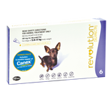 Revolution Dog (Bonus Canex with a 6 pack)