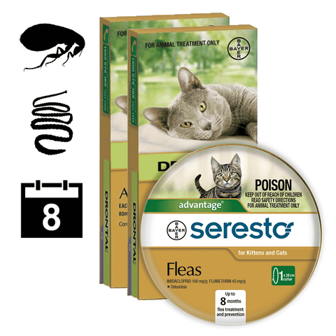 Cat flea & worm package 4 (8 month auto delivery)