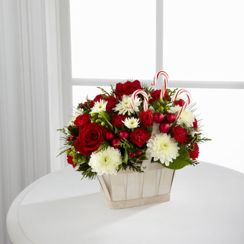 Candy Cane Lane Bouquet - Daisy Chain Design Studio