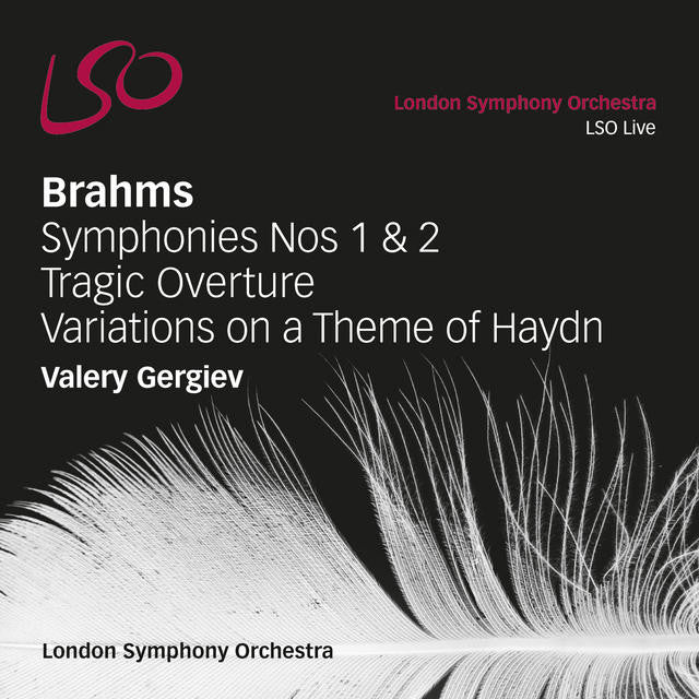 Brahms: Symphonies Nos. 1 & 2, Tragic Overture, Variations on a Theme of Haydn album cover