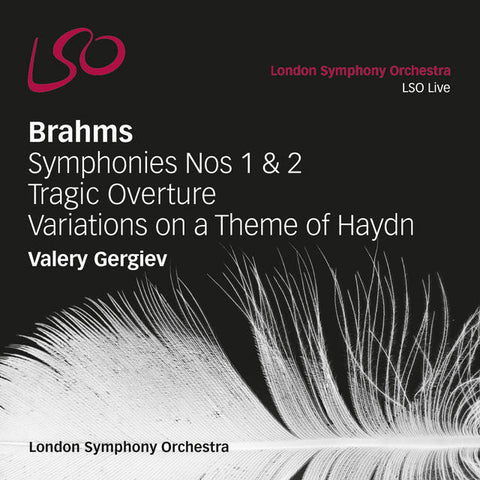 Brahms: Symphonies Nos 1 & 2, Tragic Overture, Variations on a Theme of Haydn [download]