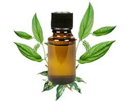 Camphor Essential Oil helps relieve Bronchitis, Colds and More!