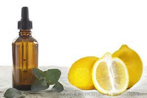 Lemon Eucalyptus Essential Oil great for Bronchitis Colds Fever Flu