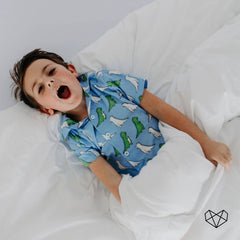 Cotton PJ Set - Blue Dinosaurs