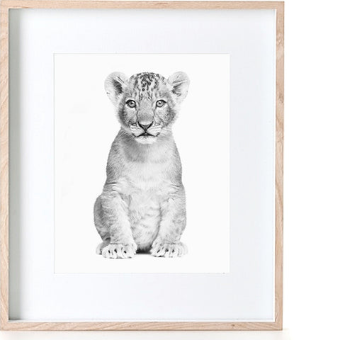 Print - Photographic Lion Cub