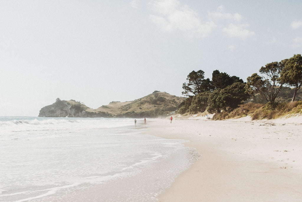 Coromandel Dream I | New Zealand Series