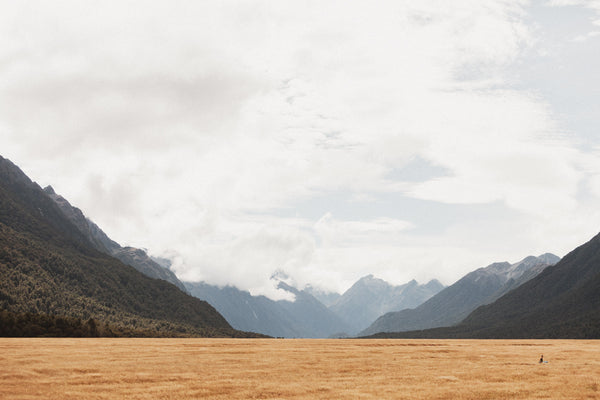 Across The Country | New Zealand Series