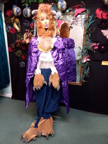 Beauty Beast Costume