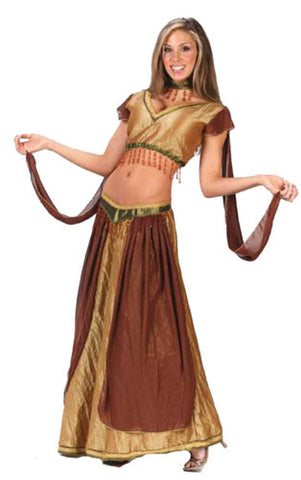 Exotic Belly Dancer Costume