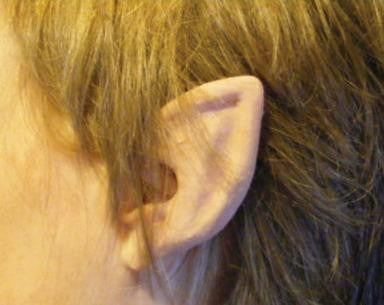 EARS, ELF FLEXI