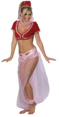 I Dream of Jeannie Deluxe Costume