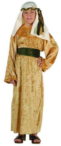 Deluxe Wiseman Olive Costume - Child Costume