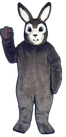 J.R. Rabbit Costume