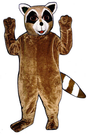 Ryan Raccoon Costume