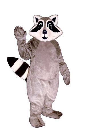 Little Racoon Costume