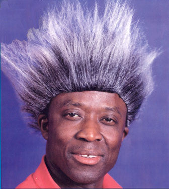 Don King Wig Style 2