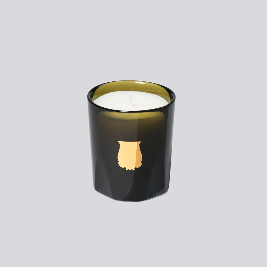 Petite Candle Cyrnos