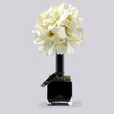 WHITE ORCHIDS SMALL TOPIARY