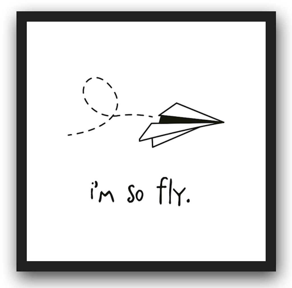 i'm so fly. 12x12 framed poster.