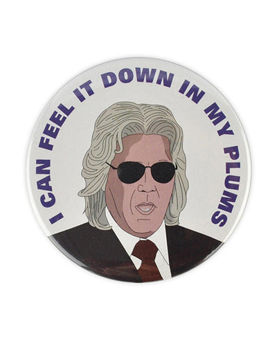 "Ashley Schaeffer ""I can feel it down in my plumbs"" large button - bestplayever"